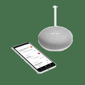 Google Home Assistent